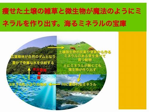 大地の循環の法則